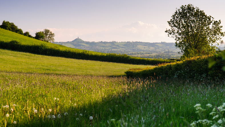 Explore Ham Hill on your Somerset break